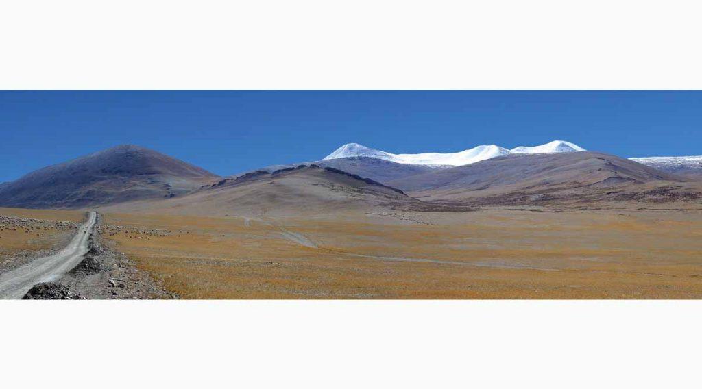 Tibet 3500 animals T1